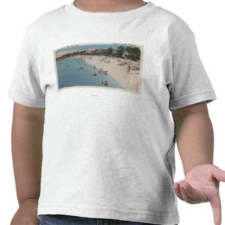 Playa colonial, VA - escena que toma el sol y que Camisetas