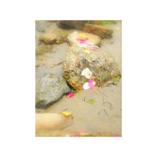 Playa color de rosa del pedal lona estirada galerías