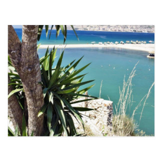Playa con una palmera en Albania en un verano cali Tarjetas Postales
