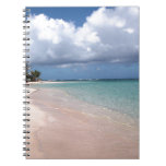 Playa Culebra del flamenco Spiral Notebook