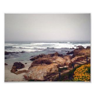 Playa de Asilomar, arboleda pacífica, CA, los E.E. Fotografía