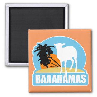 Playa de Baaahamas Imán Cuadrado