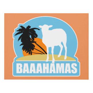 Playa de Baahamas