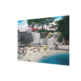 Playa de baño en la arboleda pacífica lienzo envuelto para galerias