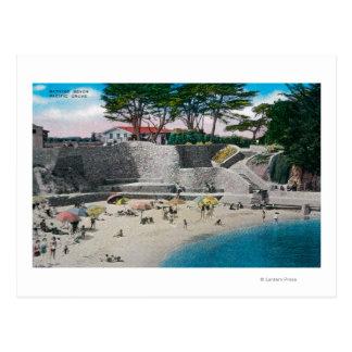 Playa de baño en la arboleda pacífica tarjetas postales