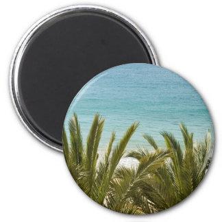 Playa de Benidorm Iman De Frigorífico