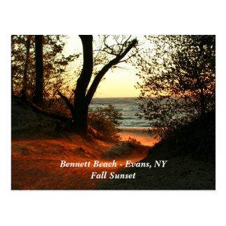 Playa de Bennett - Evans, NY Tarjetas Postales