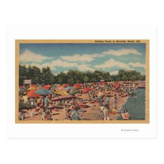 Playa de Beverley MD - escena que toma el sol Postal