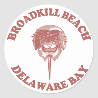Playa DE. de Broadkill Pegatinas Redondas