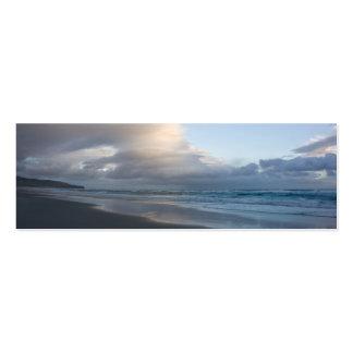 Playa de Dunedin en la oscuridad DSC6544 Tarjetas De Visita Mini