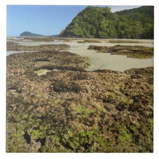 Playa de Emmagen, parque nacional de Daintree (la  Azulejo Ceramica