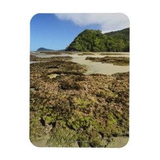 Playa de Emmagen, parque nacional de Daintree (la  Imán Foto Rectangular