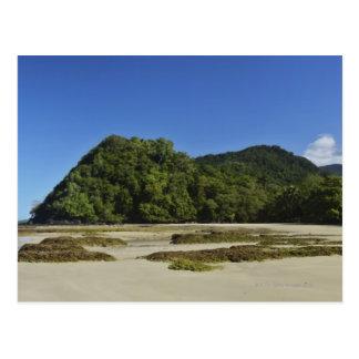 Playa de Emmagen, parque nacional de Daintree (la Tarjeta Postal