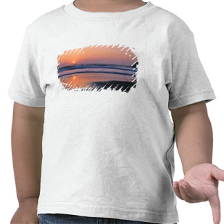 Playa de estado de Trinidad, California. LOS Camisetas