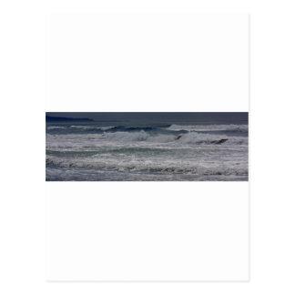 Playa de Horsfall, Oregon Tarjetas Postales