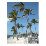 Playa de Islamorada la Florida Postales