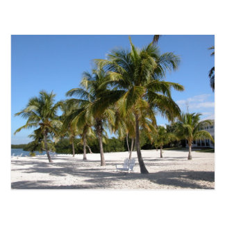 Playa de Islamorada la Florida Tarjeta Postal