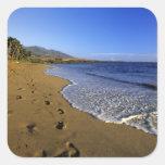 Playa de Kaanapali, Maui, Hawaii, los E.E.U.U. Pegatina Cuadrada