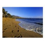 Playa de Kaanapali, Maui, Hawaii, los E.E.U.U. Tarjeta Postal
