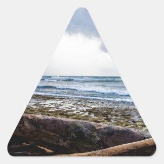 Playa de Kauai con driftwood Pegatina Triangular