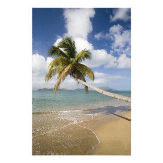 Playa de la arboleda del coco en la bahía de Cades Fotografias