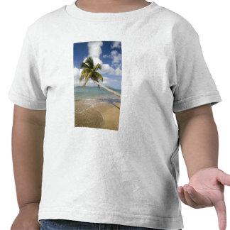 Playa de la arboleda del coco en la bahía de camisetas