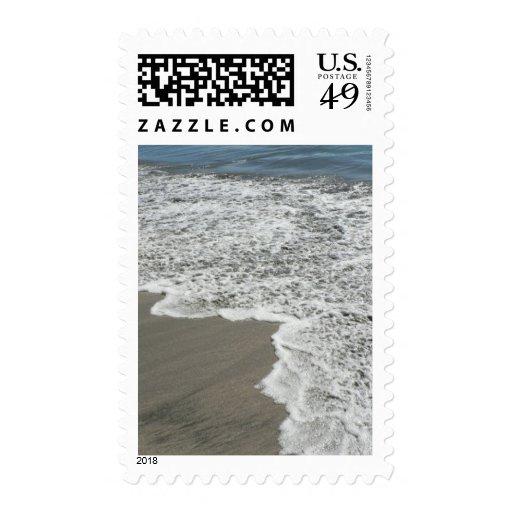 Playa de la arena de la reunión del agua del sello