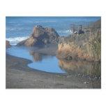 Playa de la costa de Mendocino Tarjetas Postales