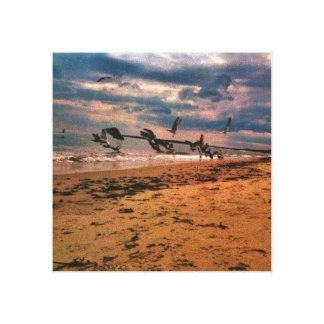 Playa de la gaviota impresiones en lienzo estiradas