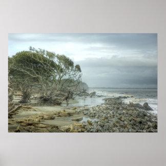 Playa de la isla de Jekyll Póster