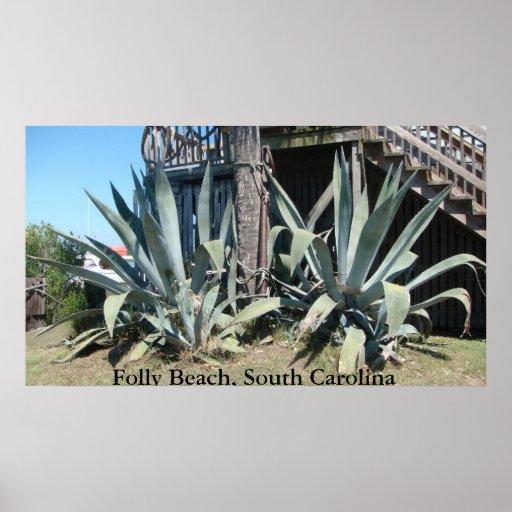 Playa de la locura, Carolina del Sur Póster