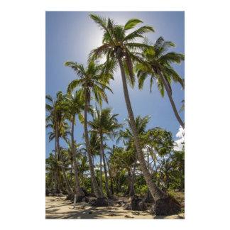 Playa de la misión fotografías