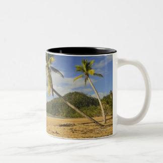 Playa de la misión taza de café de dos colores