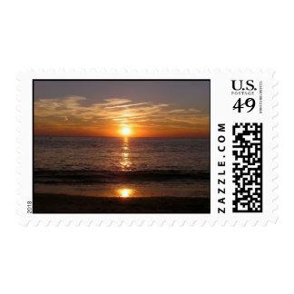 playa de la puesta del sol sellos