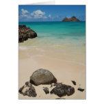 Playa de Lanikai, Oahu Felicitación