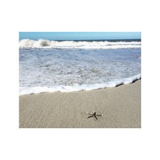 Playa de las estrellas de mar lienzo envuelto para galerias
