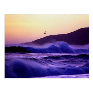 Playa de Malibu Tarjeta Postal