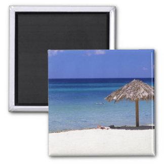 Playa de Malmok, Aruba, Antillas holandesas Imán Cuadrado