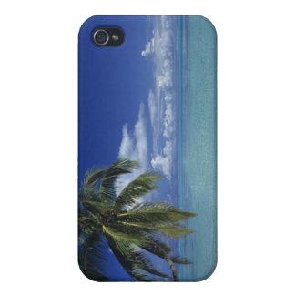 Playa de Matira en la isla de Bora Bora, iPhone 4 Cárcasas