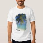 Playa de Matira en la isla de Bora Bora, sociedad Playeras