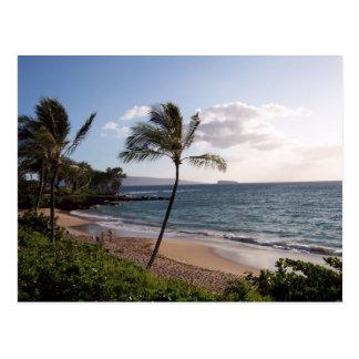 Playa de Maui Tarjetas Postales