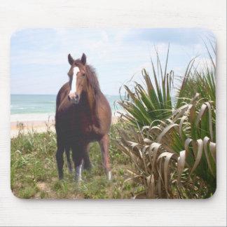 Playa de Mousepad del caballo