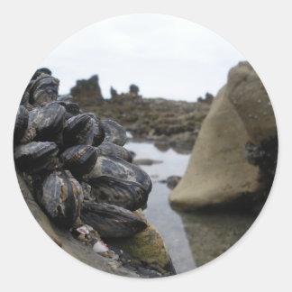 Playa de Newport con marea baja Etiquetas Redondas