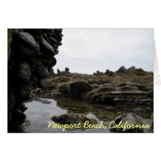 Playa de Newport Tarjeta De Felicitación
