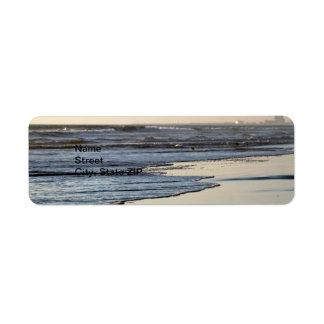 Playa de Ormond de la puesta del sol de la playa Etiquetas De Remite