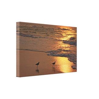 Playa de oro lona estirada galerias