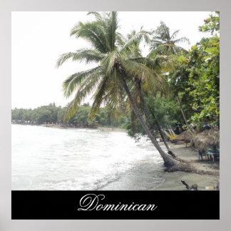 Playa de Palenque en la República Dominicana Póster