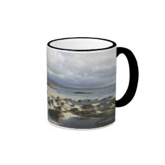 Playa de plata del filamento taza de dos colores