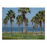 Playa de San Diego Poster