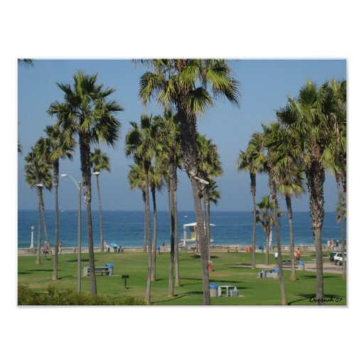 Playa de San Diego Póster